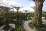 OCBC_Skyway,_Gardens_By_The_Bay,_Singapore_-_20140809 a
