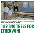 Treepreneurs