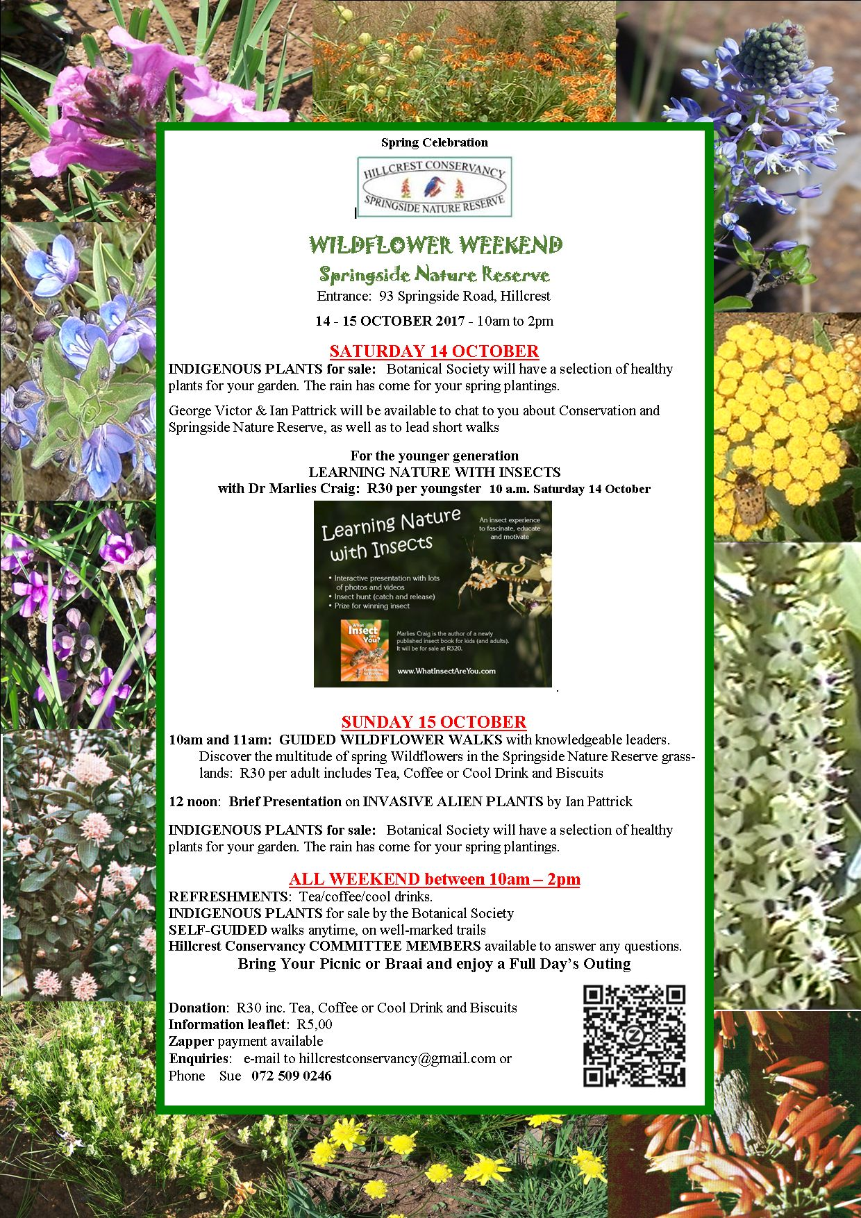 Hillcrest wildflower weekend Sep2017