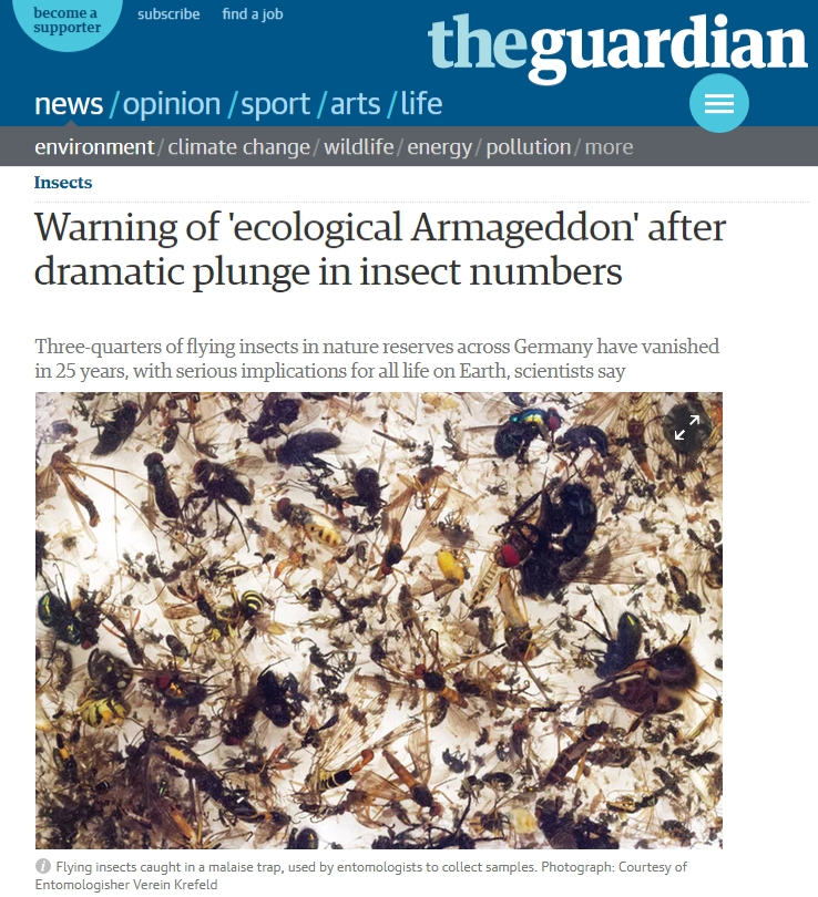 InsectArmageddon